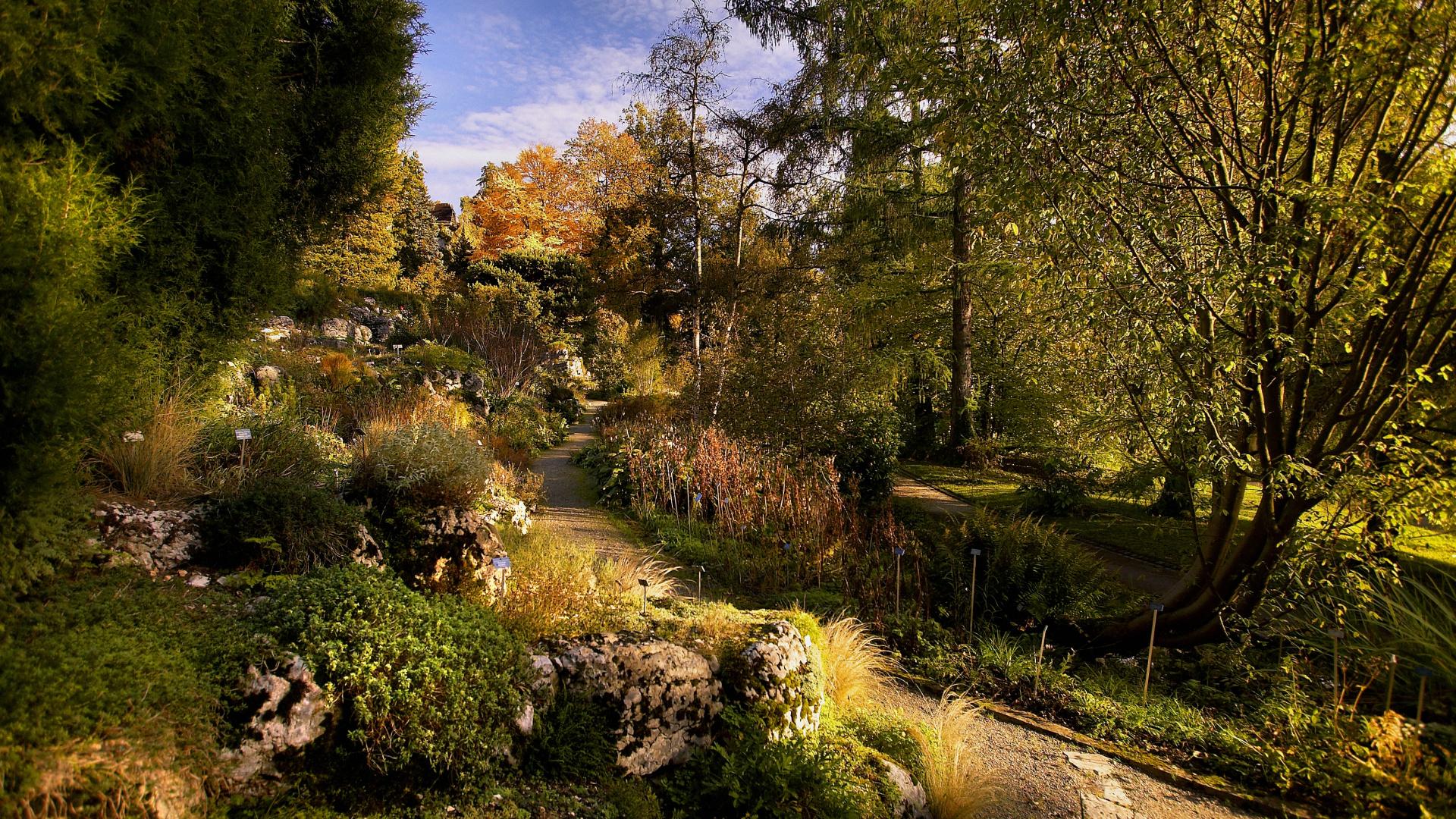 The Botanical Garden of the University of Bern - Bern Welcome