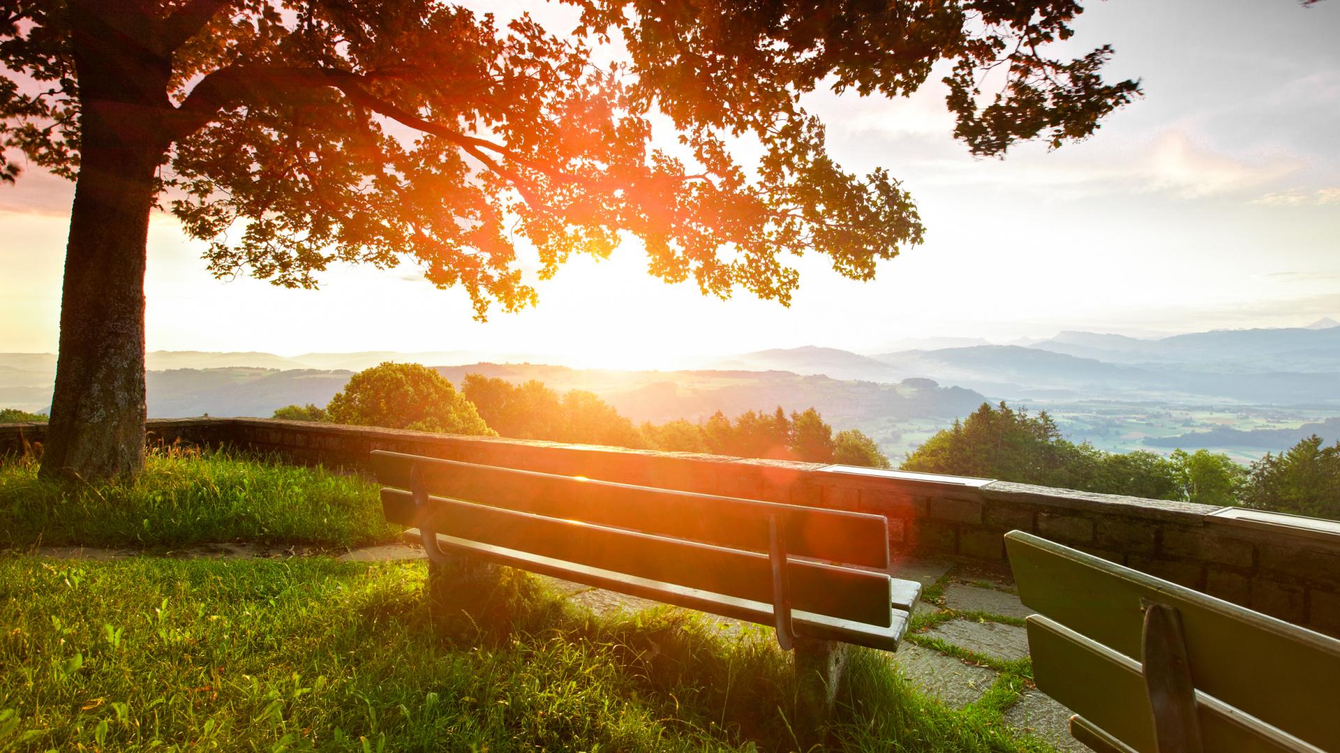 Cugy Singles Und Umgebung Slow Dating Bourg-En-Lavaux Berg